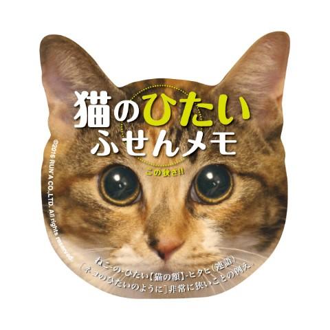 猫のひたい ふせんメモ ジュマ 【WEB先行発売】